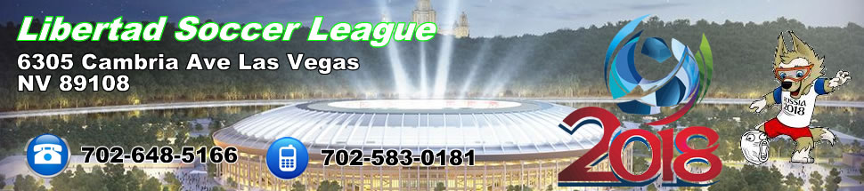 Libertad Soccer League